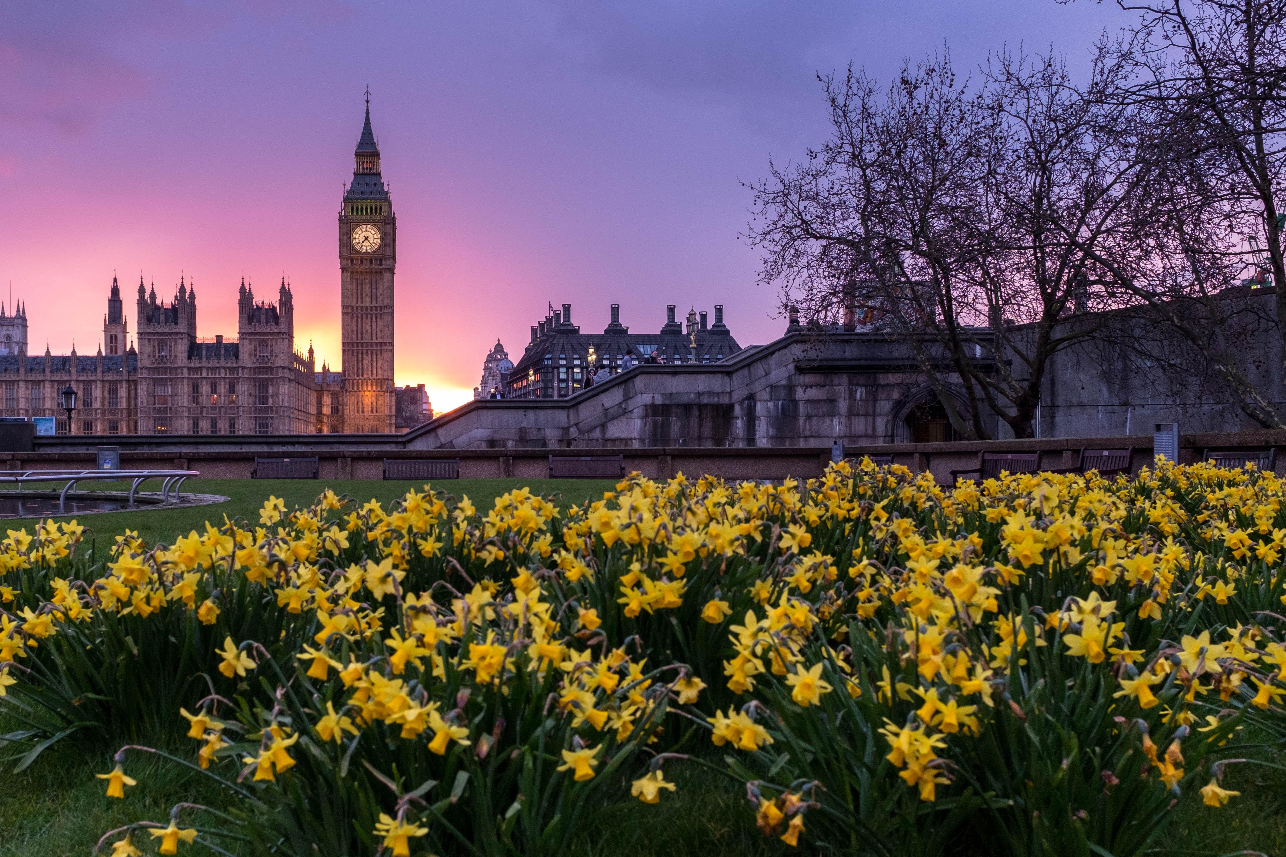 list multi family offices london uk